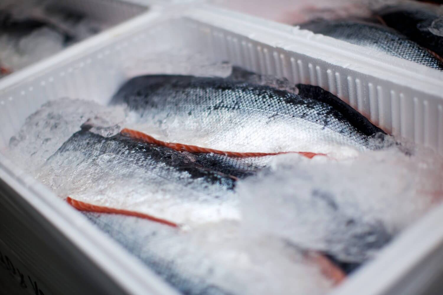 Cold Chain Transportation for fresh food