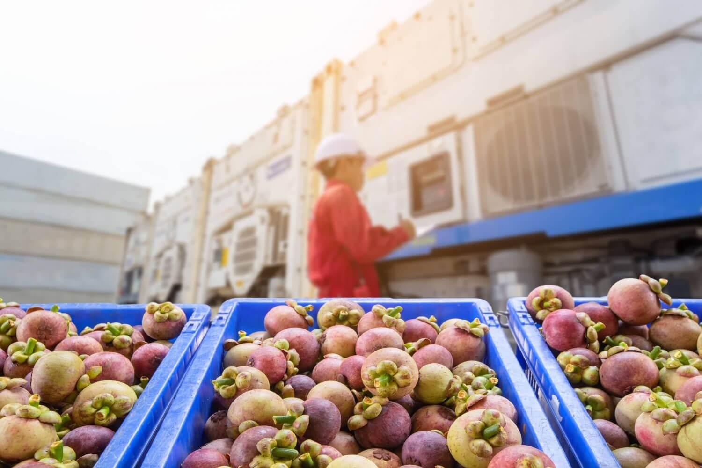 Food transportation Process